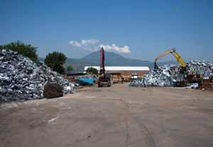 galleria 2 foto 2 Azienda 1 - Azienda